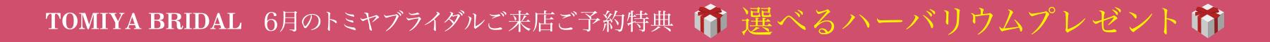 br_herbarium_banner